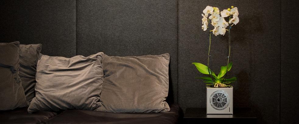 AIRYBOX идеальный цветочный горшок для орхидей